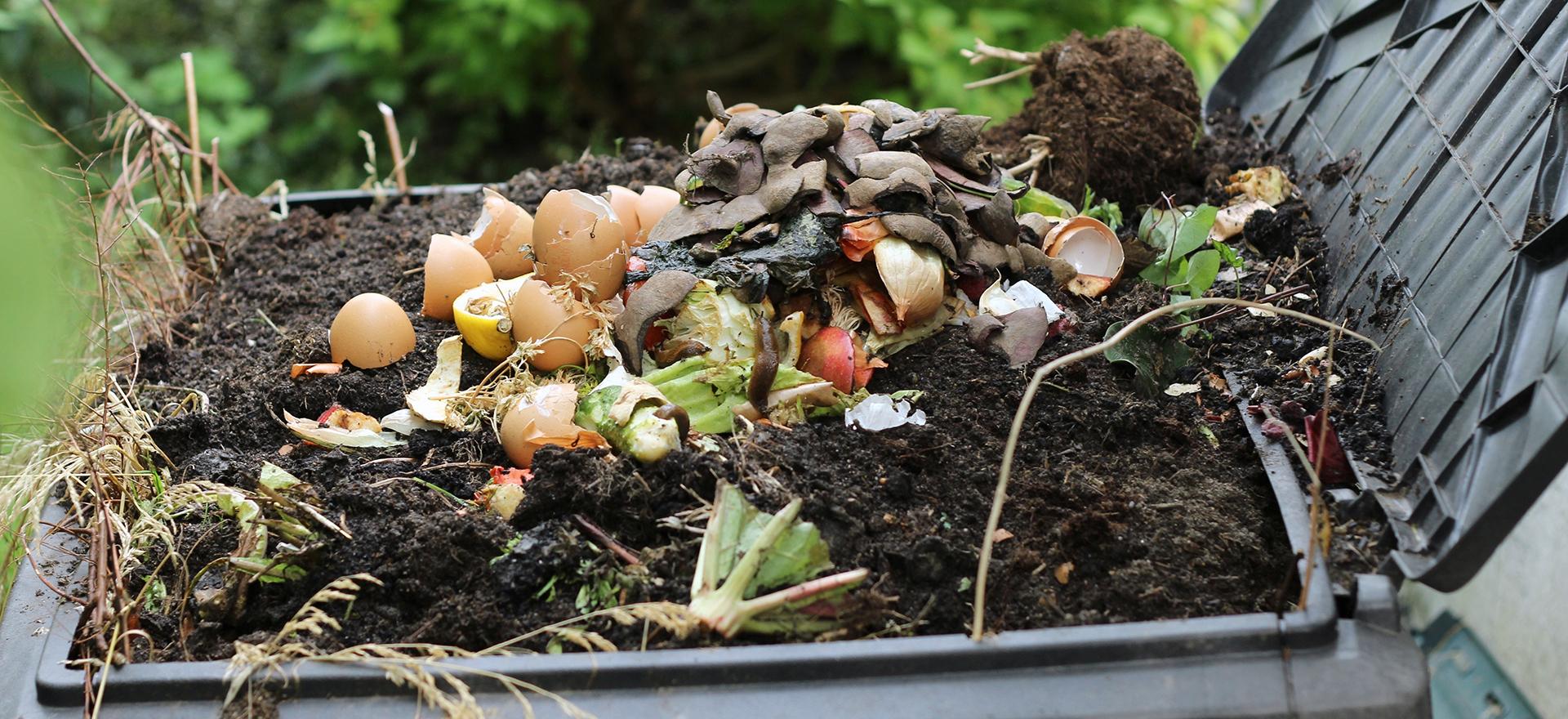 Vos questions repondues pour les matières organiques de la Ville de Rosemère